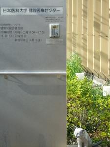 日本医科大学健診医療センター.jpg
