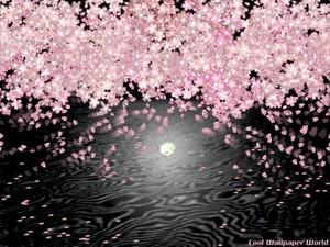 水面月と桜.jpg