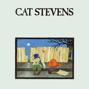 cat stevens.jpg