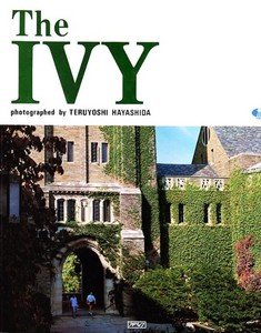 the ivy.jpg