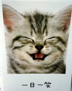 一日一笑.jpg